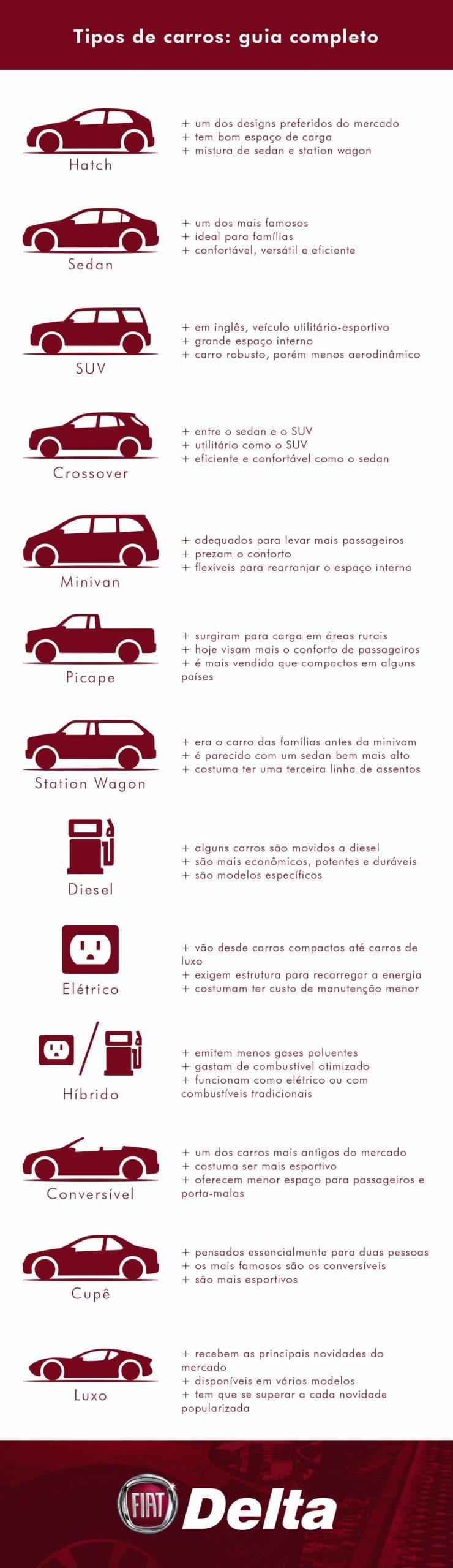 Infográfico completo dos tipos de carros